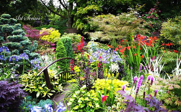 Мечтаната цветна градина | Art senses - артистични идеи за ...