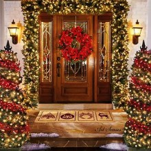 Decorarea exterioară de Crăciun (6)