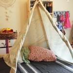 Šator za indijski savet (15)