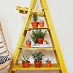 旧梯子的想法(3)