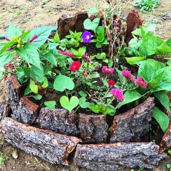 Umělecké zahradní dekorace s borovou kůrou
